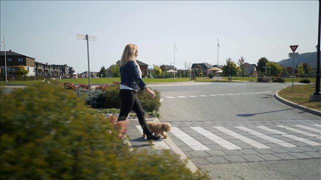Victime d'une attaque de chien