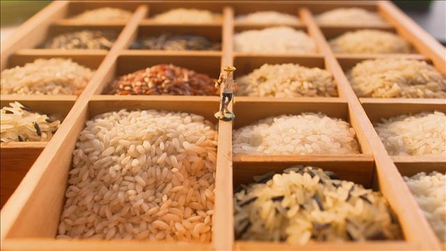 Du riz pour tous les goûts