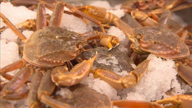 Le prix du crabe des neiges