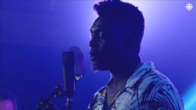 Aperçu Festival International nuits d'Afrique - Performances musicales