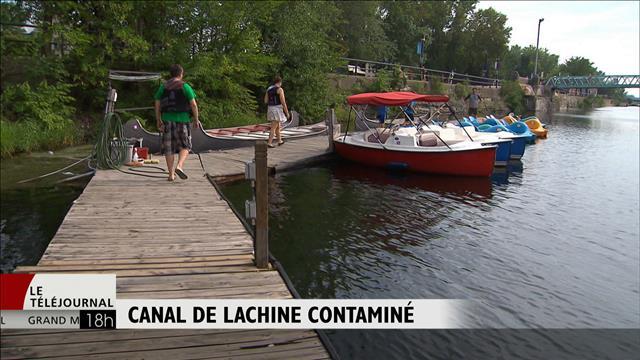 Le canal de Lachine contaminé par les déversements d'égouts