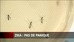 Virus Zika : pas de panique en Amérique du Nord