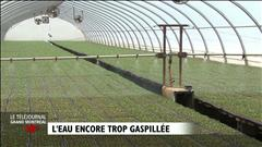 Sensibilisation au gaspillage d'ea potable (2014-07-15)