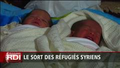 Inquiétudes pour les réfugiés syriens : récit de Luc Lapierre (2015-01-05)