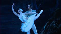 Lac des cygnes - Rencontre avec le directeur artistique du Ballet Royal de Winnipeg André Lewis