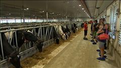 Visite d'une ferme ultra-moderne en Alberta
