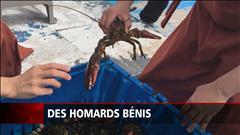 Des homards bénis par des moines à l'Î.-P.-E.