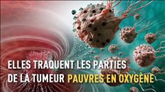 Des nanorobots contre le cancer