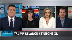Le panel politique du 24 janvier 2017
