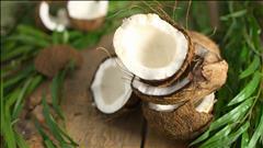 produit vedette: La noix de coco