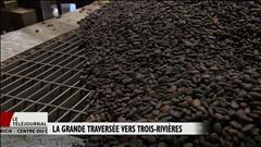 La grande traversée du cacao jusqu'au port de Trois-Rivières