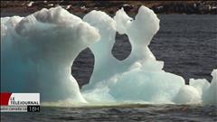 Les icebergs, un casse-tête pour les pêcheurs à Terre-Neuve-et-Labrador