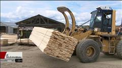 Les conséquences possibles du conflit du bois d'oeuvre