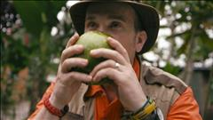 Chanson Jolis fruits