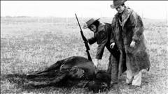 L'Union nationale métisse : la Chasse aux bisons