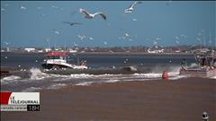 L'ensablement des quais inquiète les pêcheurs