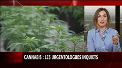 Cannabis : les urgentologues inquiets
