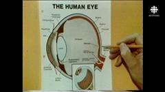 Éclipses solaires et campagnes de prévention en 1979 et 1994