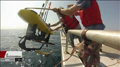 Recherche pour trouver les nouveaux habitats des baleines noires