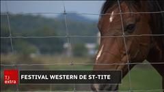L'élevage des chevaux de rodéo