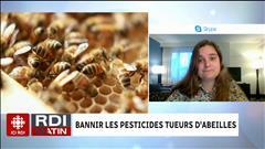 Bannir les pesticides tueurs d'abeilles