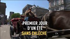 Des cochers du Vieux-Montréal manifestent contre l'interdiction des calèches