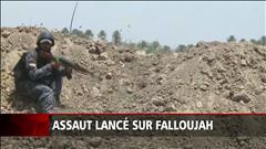 Assaut sur Falloujah