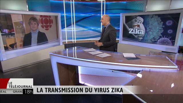 Le virus Zika, dangereux pour le fœtus?