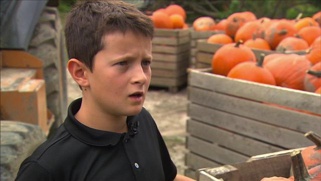 Un jeune entrepreneur de 12 ans qui vend des citrouilles