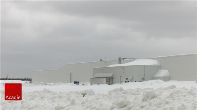 Projet d'usine et de 95 emplois bien accueilli dans la Péninsule acadienne
