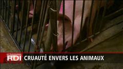 Le reportage de Benoît Giasson