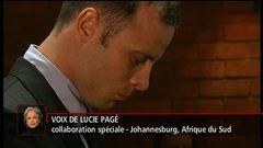 L'affaire Pistorius