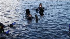 Une plongée sous-marine en direct à Victoria