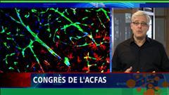 Charles Tisseyre à l'ACFAS