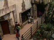 Le jardin zoologique fermera ses portes ici radio for Le jardin zoologique