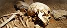 Des ossements racontent la misère à Ottawa au XIXe siècle