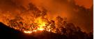 Il y a 100 ans, un feu de forêt dévastait le nord de l'Ontario