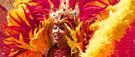 Un Carnaval de Rio moins joyeux cette année